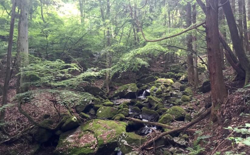 高畑山 – 天神山 – 倉岳山